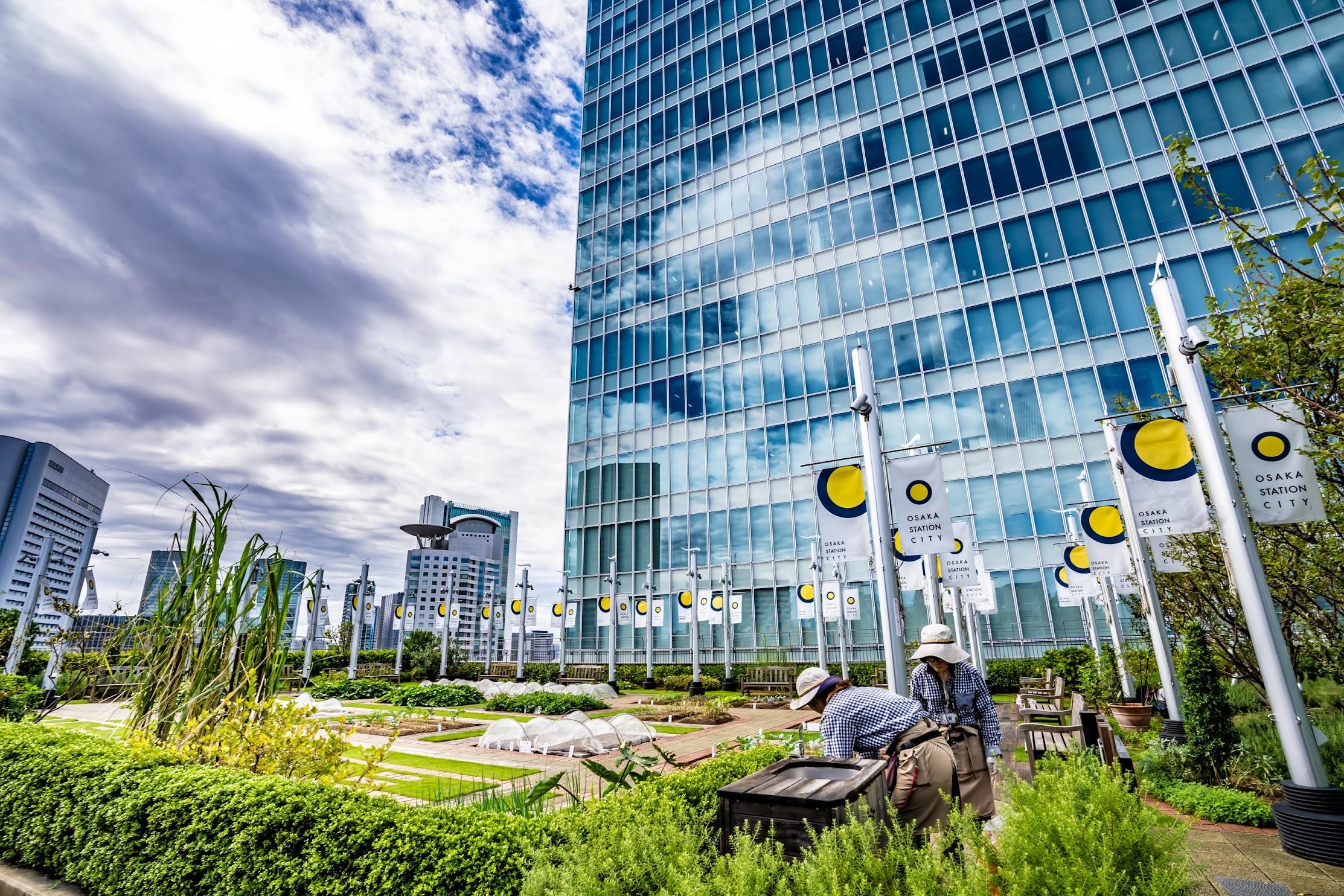 大阪ステーションシティ 天空の農園2