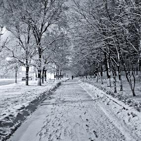 Moscow at 4 a.m January 1, 2012 by Dmitry Samsonov - City,  Street & Park  City Parks
