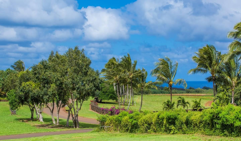 Maison Kilauea