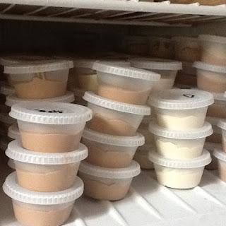 White Russian Pudding Shots Recipe