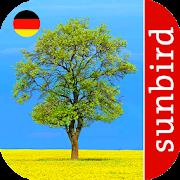 App Icon for Baum Id - Deutschlands Bäume App in Czech Republic Google Play Store