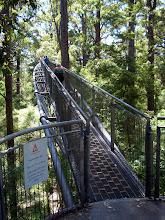 Photo: Hier gibt es Stalhbrücken quer durch die Baumwipfel