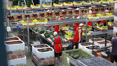 La empresa está formada por 400 empleados en plena temporada.