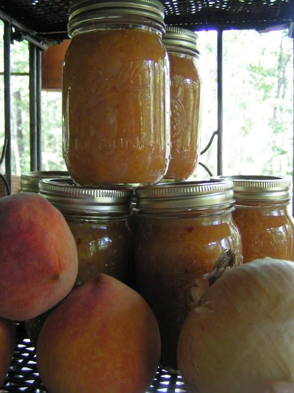 Vidalia Onion & Peach Relish Recipe