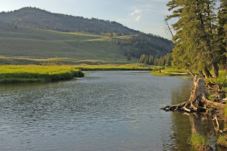 Photo: Slough Creek- Mad River Outfitters Montana Trip
