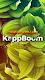 screenshot of Kappboom - Cool Wallpapers & Background Wallpapers