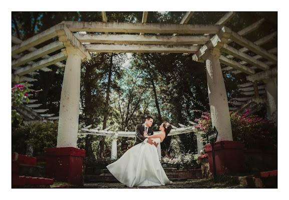 Fotógrafo de bodas Alma Romero (almaromero). Foto del 08.11.2017