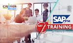 SAP PM Training in Noida