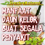 obat obatan herbal dieta para la diabetes untuk