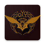 Harry Potter Quidditch Icon