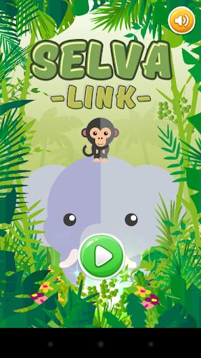 Lín Link