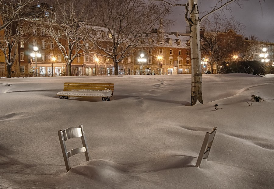 by Clermont Poliquin - City,  Street & Park  City Parks ( night lights, pwc83: night light )