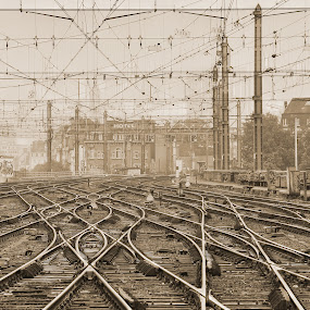 On The Right Track by Guy Longtin - Transportation Trains (  )