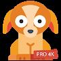 Puppy Wallpapers 4K PRO Puppy Backgrounds временно бесплатно