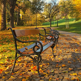 Autumn in Prague  by Michal Kostka - Landscapes Weather ( autumn, colors, czech, prague, podzim )