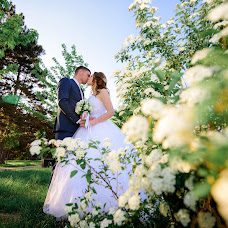 Wedding photographer Irina Dolotova (Dolotova). Photo of 11.05.2018