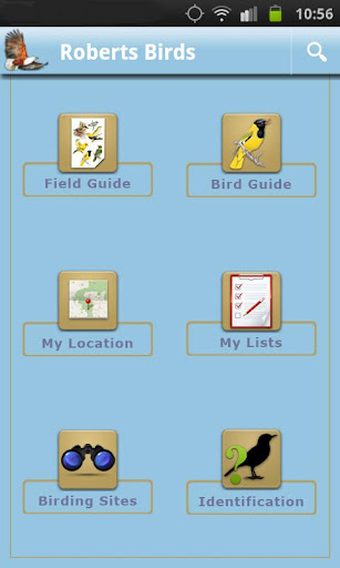 Screenshot for Roberts Multimedia Birds of SA in Hong Kong Play Store