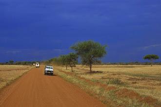 Photo: La savane, malgré son air plat, offre une grande variété de paysages.