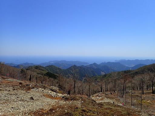 伐採地から熊野灘