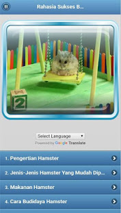 How To Succeed In Cultivating Hamsters For Pc Windows 7 8 10