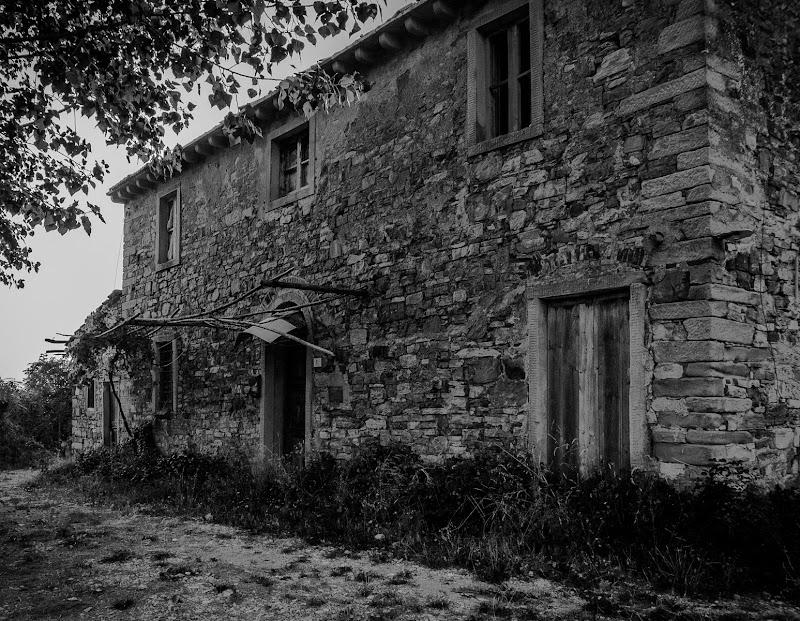 rustico senza vita di Pier Francesco Borgatti