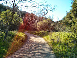 Photo: Little Sycamore Canyon