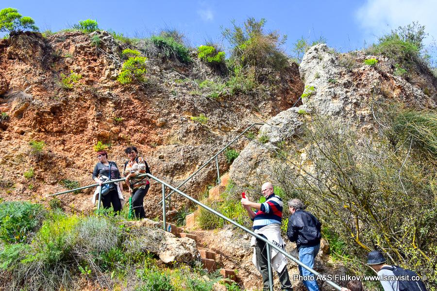 Гид в Израиле Светлана Фиалкова. Экскурсия в национальном парке Ручей Аюн.