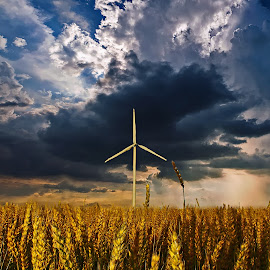by Bill Diller - Landscapes Weather ( turbine, wind power, storm, stormy, michigan, windmill, farm field, storm clouds )