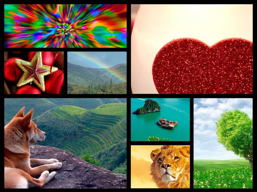 Hd wallpaper app - Wallpapers Hd Screenshot