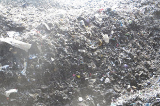 Photo: Fines ready for further composting