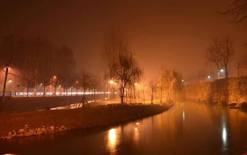 Treviso di Julia Leonte