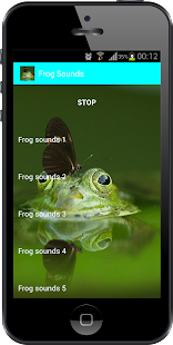 Frog Sounds