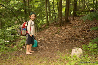 Photo: Heading up the trail at Fort Dummer State Park