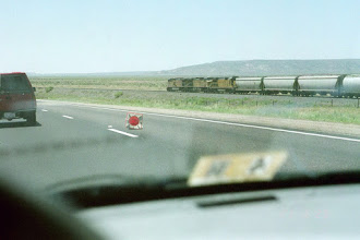 Photo: Racing a train, NM