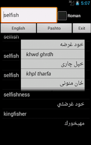 English Pashto Dictionary screenshot 6