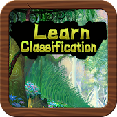 Learn Classification