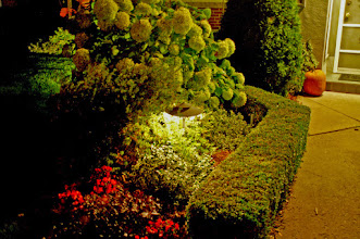 Photo: Fixtures should blend into the garden, even when lighting pathways.