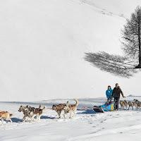 Escursione tra le nevi .. di