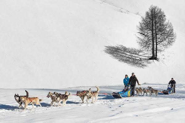 Escursione tra le nevi .. di Giancarlo Lava