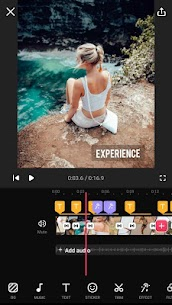 Video Guru – Video Maker Pro MOD APK [Pro Features Unlocked] 8