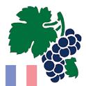 Weinquiz Frankreich icon