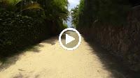 Ước Nguyện Đầu Xuân (Remix) – Nhạc Sống Organ