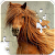 Jigsaw Puzzles Horses file APK for Gaming PC/PS3/PS4 Smart TV