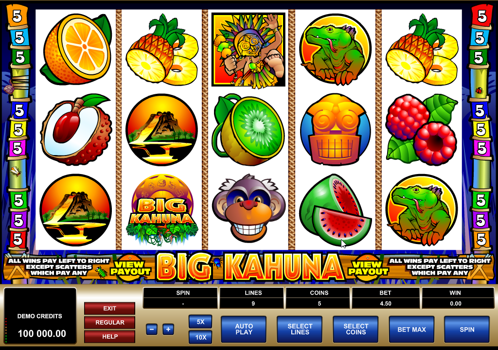 Big Kahuna Slots Game Review