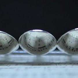 Musical spoons by Debbie Slocum Lockwood - Abstract Macro