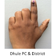 VOTER SEARCH DHULE PC 2019