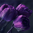 Colour Purple Wallpapers Theme |GreaTab