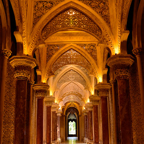 Moserrate Palace by Julio Cardoso - Buildings & Architecture Other Interior