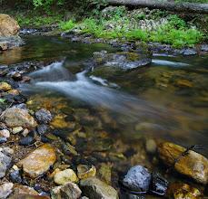 Photo: Local creek