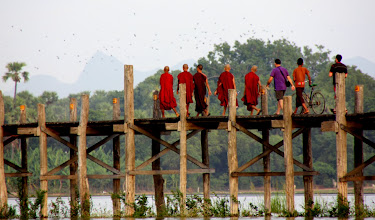 Photo: Year 2 Day 55 - Monks and Starlings